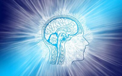 ADHD Basics   The Neurotransmitter Connection
